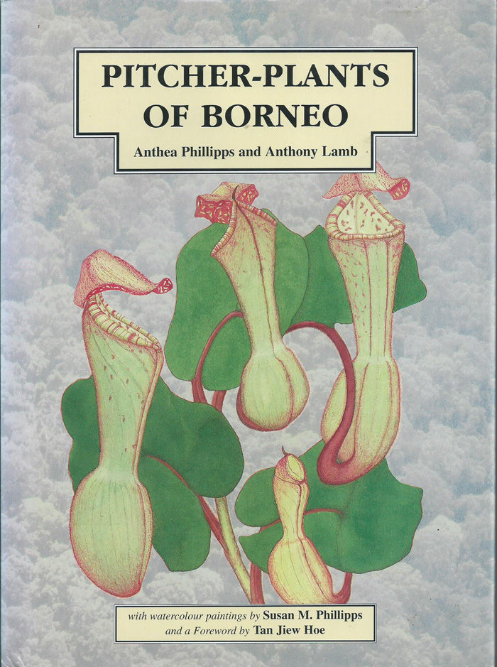 Pitcher plants of Borneo A.Phillipps & A.Lamb